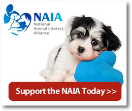Donate Today - Help The NAIA
