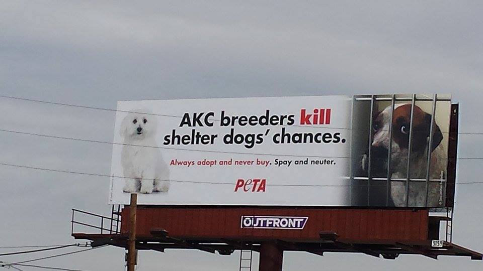 Denver billboard… brought to you by the people who killed